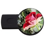 1-4 USB Flash Drive Round (4 GB)