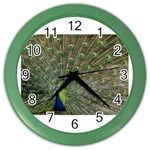 bird_15 Color Wall Clock