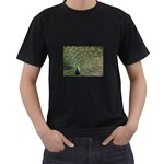bird_15 Black T-Shirt