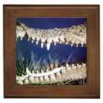 Croc Framed Tile