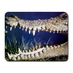 Croc Small Mousepad