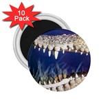 Croc 2.25  Magnet (10 pack)