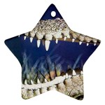 Croc Star Ornament (Two Sides)