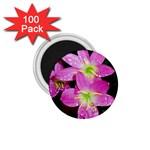 landat_01 1.75  Magnet (100 pack)