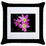 landat_01 Throw Pillow Case (Black)