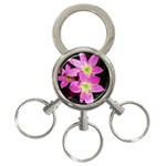 landat_01 3-Ring Key Chain