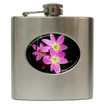 landat_01 Hip Flask (6 oz)