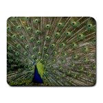 bird_15 Small Mousepad