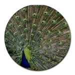 bird_15 Round Mousepad