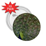 bird_15 2.25  Button (10 pack)