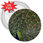 bird_15 3  Button (100 pack)