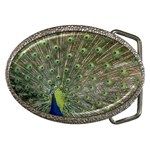 bird_15 Belt Buckle