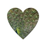 bird_15 Magnet (Heart)