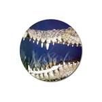 Croc Magnet 3  (Round)