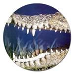 Croc Magnet 5  (Round)