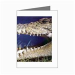 Croc Mini Greeting Cards (Pkg of 8)