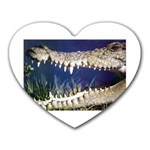 Croc Mousepad (Heart)