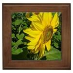 flowers_30 Framed Tile