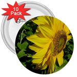 flowers_30 3  Button (10 pack)