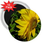 flowers_30 3  Magnet (10 pack)
