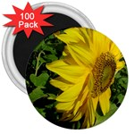 flowers_30 3  Magnet (100 pack)