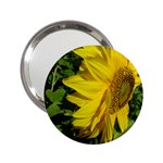 flowers_30 2.25  Handbag Mirror