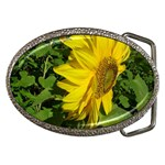 flowers_30 Belt Buckle