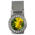 flowers_30 Money Clip (CZ)