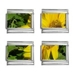 flowers_30 9mm Italian Charm (4 pack)