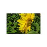 flowers_30 Sticker (Rectangular)