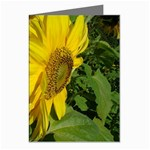 flowers_30 Greeting Cards (Pkg of 8)