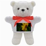 flowers_30 Teddy Bear