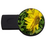 flowers_30 USB Flash Drive Round (4 GB)