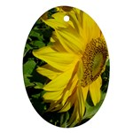 flowers_30 Oval Ornament (Two Sides)