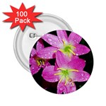 landat_01 2.25  Button (100 pack)