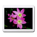 landat_01 Large Mousepad
