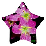 landat_01 Star Ornament (Two Sides)
