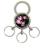 landat_02 3-Ring Key Chain