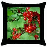 other_photos_3 Throw Pillow Case (Black)