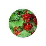 other_photos_3 Rubber Round Coaster (4 pack)