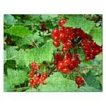 other_photos_3 Jigsaw Puzzle (Rectangular)