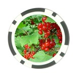 other_photos_3 Poker Chip Card Guard (10 pack)