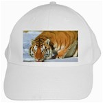 tiger_4 White Cap