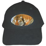 tiger_4 Black Cap