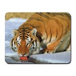 tiger_4 Small Mousepad