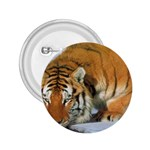 tiger_4 2.25  Button