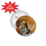 tiger_4 1.75  Button (10 pack)