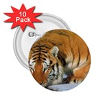 tiger_4 2.25  Button (10 pack)