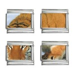 tiger_4 9mm Italian Charm (4 pack)