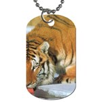 tiger_4 Dog Tag (One Side)